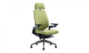 Ergoman High Back and Visitor Chair