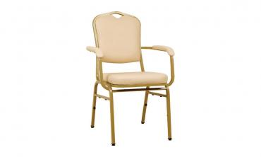 Banquet Multi Color Dinning Chairs
